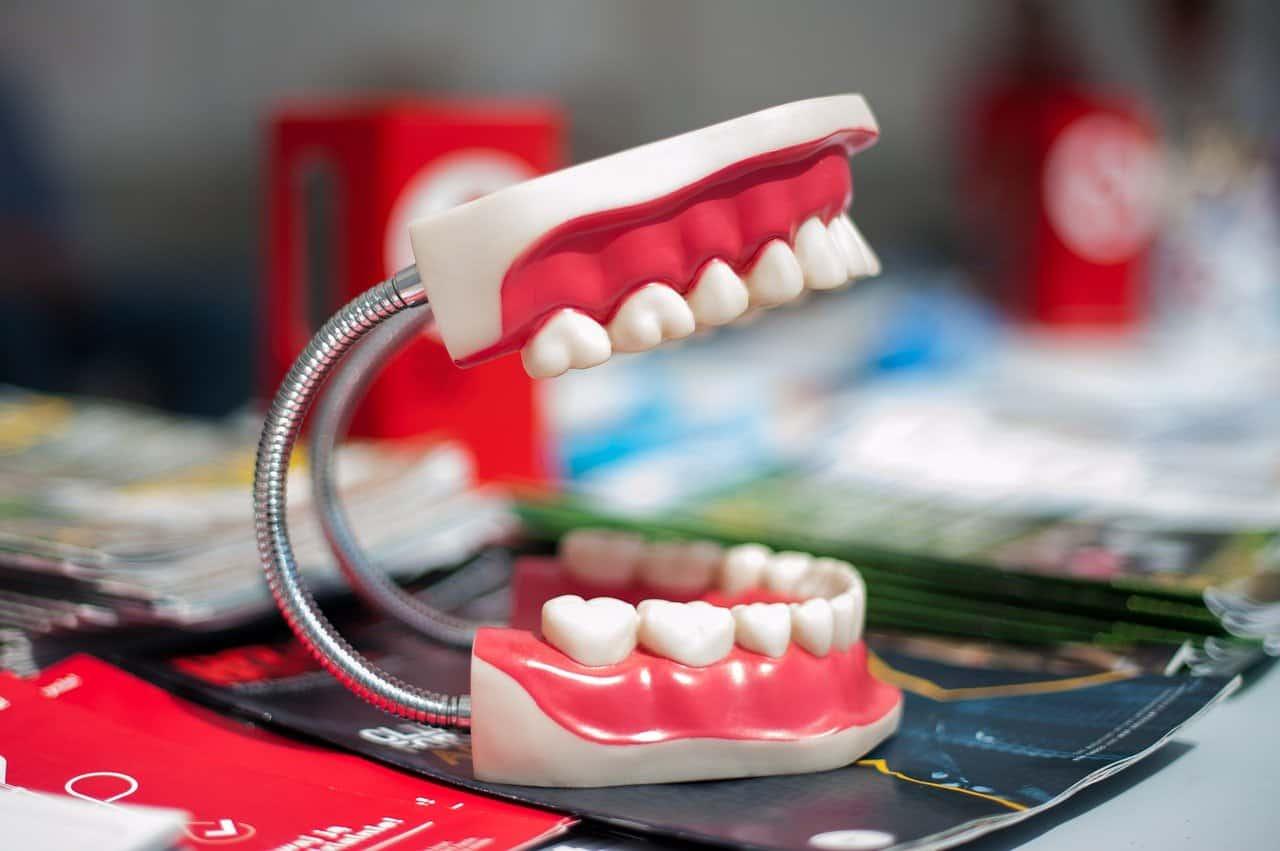 dentalist
